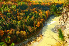 Autumn scene of river and forest Stock Photography