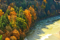 Autumn scene of river and forest Stock Photos