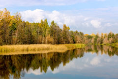 Autumn scene on river Stock Photography