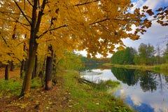 Autumn scene on river Royalty Free Stock Photos