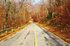 Autumn scene with road Stock Photography