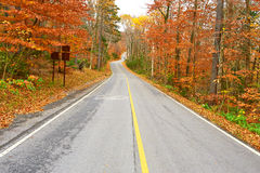 Autumn scene with road Stock Images