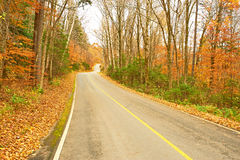 Autumn scene with road Royalty Free Stock Photos