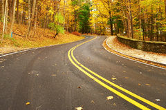 Autumn scene with road in forest Stock Photography