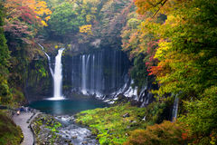 Autumn scene of Shiraito waterfall Stock Images