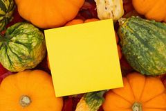 Autumn Scene. Some fall leaves and pumpkins and gourds with a yellow sticky note for copy space for your message stock photography