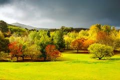 Autumn scene with sun and rain Stock Photography
