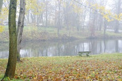 Autumn scene with trees and pond Royalty Free Stock Photography