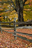 Autumn scene in Virginia Stock Photo