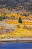 Autumn scene in Wyoming Stock Image