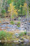 Autumn Scene On York River stockbild