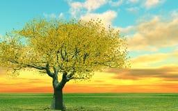 Autumn scenery. Autumn tree in the sunset Stock Illustration