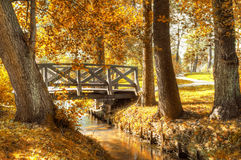 Autumn scenery. Royalty Free Stock Images