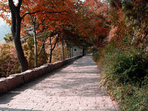 Autumn scenery. Autumn of scenery in a garden in china Royalty Free Stock Photos