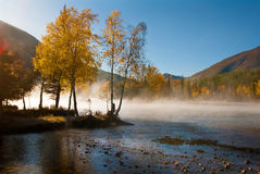 Autumn scenery Royalty Free Stock Image