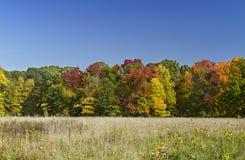 Autumn scenery Stock Photography