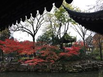 Autumn scenery at ancient Chinese garden in Suzhou. Humble Administrator`s Garden, the largest garden in Suzhou, China. UNESCO heritage site. Photo taken in Nov Stock Photography
