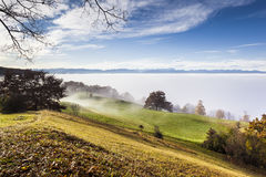 Autumn scenery bavaria Stock Photography