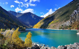 The autumn scenery. Beautiful autumn scenery under the blue sky Stock Photo
