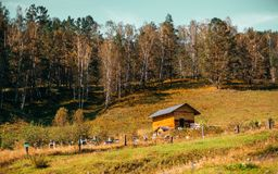 Autumn scenery with bee-garden and small wooden house. Beautiful autumn landscape: small wooden lodge with hill in background overgrown with dry native grasses Stock Images