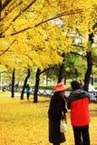 Autumn scenery in Beijing Stock Photo