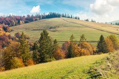 Autumn scenery on a bright and warm day. Lovely colors royalty free stock images