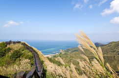 Autumn scenery of the coast of Taiwan Stock Photography