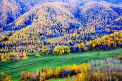 Autumn scenery of Hemu Stock Images