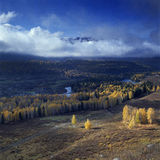 Autumn scenery @ Hemu, Xinjiang China Royalty Free Stock Images