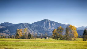 Autumn scenery. An image of an autumn scenery in bavaria germany Royalty Free Stock Photo