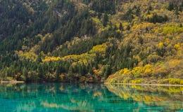 The autumn scenery royalty free stock photo