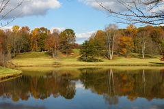 Autumn Scenery by Meadowlark Botanical Gardens Virginia. Trees change color, shed leaves and reflect on lake on a Fall day in November Stock Photography