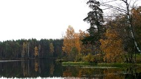 Cold sky of autumn Royalty Free Stock Photography