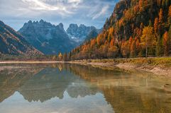 Autumn scenery of Lake Landro in Dolomite Alps, Italy. Autumn scenery of Lake Landro - Lago di Landro - Durrensee - with snow-capped Dolomite Mountains on Royalty Free Stock Photo