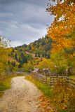 Autumn scenery landscape with colorful forest, wood fence and rural road in Prisaca Dornei. Suceava County, Bucovina, Romania Stock Photography
