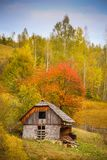 Autumn scenery landscape with colorful forest, wood fences and abandoned hay barn in Prisaca Dornei. Suceava County, Bucovina, Romania Royalty Free Stock Photography