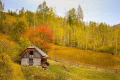Autumn scenery landscape with colorful forest, wood fences and abandoned hay barn in Prisaca Dornei. Suceava County, Bucovina, Romania Stock Images