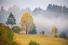Autumn scenery landscape with colorful forest, wood fences and hay barns in Bucovina, Romania. Autumn scenery landscape, colorful forest, wood fences and hay Royalty Free Stock Images
