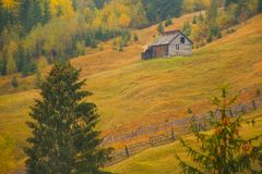 Autumn scenery landscape with colorful forest, wood fences and hay barns in Bucovina, Romania. Autumn scenery landscape, colorful forest, wood fences and hay Royalty Free Stock Photography