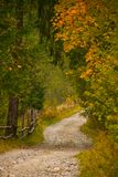 Autumn scenery landscape with rural road, colorful forest, wood fences and hay barns in Bucovina. Autumn scenery landscape with rural road, colorful forest, wood Stock Photos