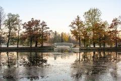 Autumn scenery Royalty Free Stock Photo