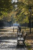 Autumn scenery of the Lazienki Park in Warsaw, Poland Royalty Free Stock Photography