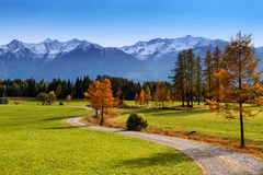 Autumn scenery of Miemenger Plateau with snow covered mountains in the background. Austria, Europe, Tyrol Stock Photos