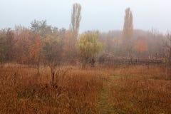 Autumn scenery misty morning. Landscape. Nature. Sadness Stock Photos