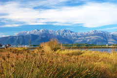 Autumn scenery of the nature reserve Tivat Stock Photography