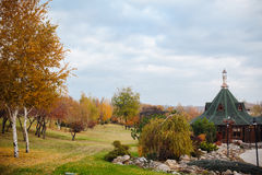 Autumn Scenery of Park Alley with Bushes and Trees on Green Grass Royalty Free Stock Photos