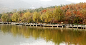 Autumn scenery on the river Stock Photos