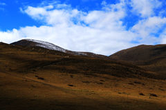 The autumn scenery on the road to Qinghai Tibet Plateau Royalty Free Stock Image
