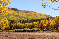Autumn Scenery in the Rocky Mountains of Colorado. Autumn colors create a unique scenic beauty in the Rocky Mountains of Colorado Stock Photos
