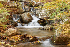 Autumn scenery with stream Royalty Free Stock Photo